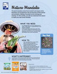 STEAM activity 7: Nature Mandala (Art)